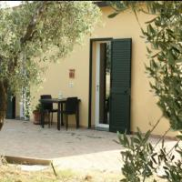 Lovely Holiday Home in Bibbona with Barbecue