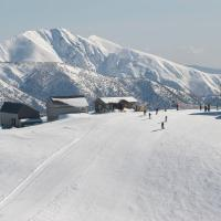 White Crystal Apartments, hotel in Mount Hotham