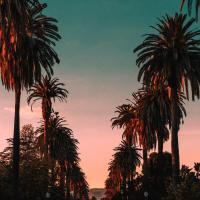 Los Angeles Rentals