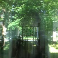 Ciche pokoje w domu przy Parku Krajobrazowym, отель в городе Варшава