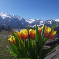 Bergwelten, отель в городе Блуденц