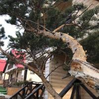 Байкал - Дар, отель в Шиде