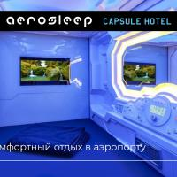 aerosleep Terminal D-международная зона, hotel near Sheremetyevo International Airport - SVO, Khimki