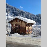 Traumhafte Ferienwohnung auf 1'300 m nahe Arosa, hotel in Peist