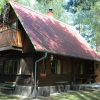 Detached romantic Cottage in the woods, hotel a Vlkov