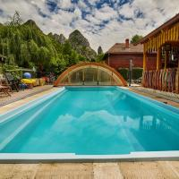 Relax in Transylvania at Ramet Mansion - Alba