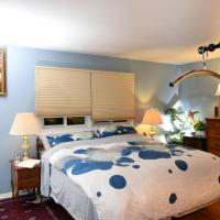 Quiet Comfy Master with King Size Bed & Convention, hotel in Palatine