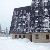 Apartments and rooms Max-Well, hotel in Jahorina