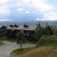 3 bedroom in Beitostølen village
