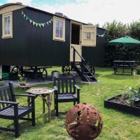 Shepherds Hut at the Beeches