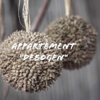 """Appartement """"DeBogen"""""""