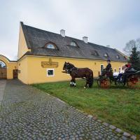 Dvůr Olšiny -Hotel and Horse-riding, отель в городе Карвина