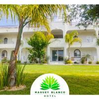 Hotel Maguey blanco