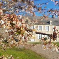Chateau La Rose Blanche
