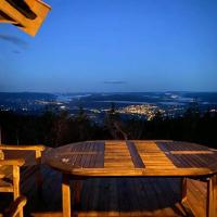 Lifjell- Falkeblikk- new cabin with majestic views close to Bø Sommarland, hotell i Bø