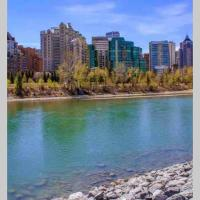 Beautiful 1bedroom in central downtown riverside.