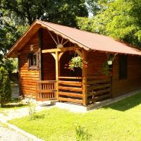 Turul Guesthouse and Camping, hotel en Remetea