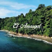 Lodge El Amargal - Reserva Natural, Ecoturismo & Surf, hotel in Nuquí