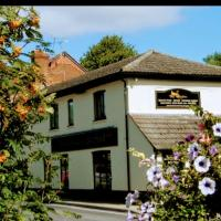 the swan stoford