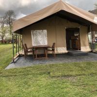 De Terp - Camping Buorren1