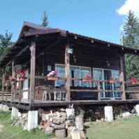 Casuta Schiorului 1, Apuseni, Marisel, hotel in Mărişel