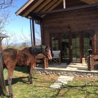 Wooden Horse House Nafar