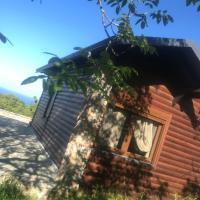 Wooden horse house Safira
