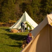 Capers in Cannich Glamping