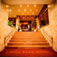 César Park Juiz de Fora Hotel