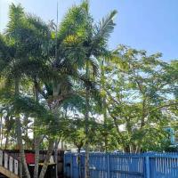 307 Lake, hotel em Cairns North