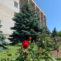 БО Солнечная, отель в Приморске