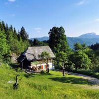 Natur pur Pikovo, hotel in Črna na Koroškem