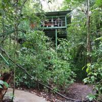 Jungle Living Tree Houses