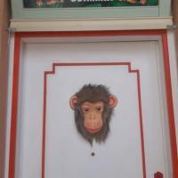 Il Vano della Scimmia Aeroporto Catania