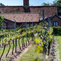 The Vine House at Chet Vineyard