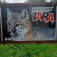 pension TARA, hotel v destinaci Teplice nad Metují