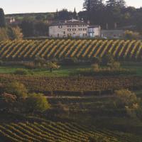 Ca' del Moro Wine Retreat, hotell i Grezzana