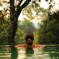 Wayanad Wild - Rainforest Lodge