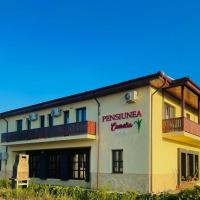 PENSIUNEA CAMELIA, hotel in Baia