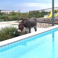 Villa Suzi Donkey farm with seaview, Hotel in Šmrika