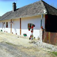 Traditionelles Bauernhaus Flieder, Hotel in Zalaszentgrót