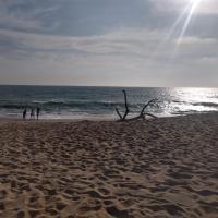 Ocean Club Beach - Torre Mediterraneo, hotel em Playas