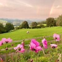 Inviting 5 Beth Caravan in Corwen North Wales