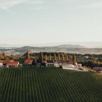 Weinquartier Pichler-Schober