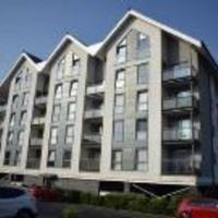 Remarkable 1-Bed Apartment in Swansea near Liberty
