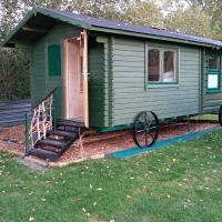 Cabin Dan