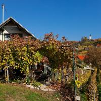Vineyard Cottage Vercek, hotel v mestu Novo Mesto