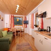 Single Apartment Martlerhof