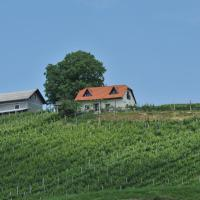 Vineyard Cottage Zdolsek