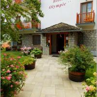 Hotel Olympic, hotel in Metsovo